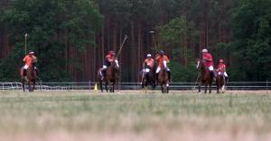 Die Trainigsstätte vom Berliner Polo Club liegt in Schönwalde