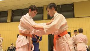 Die Tempfelhofer Judo Freunde - der Name ist Programm