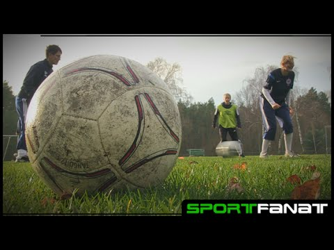 Tennis Borussia Berlin Damen – Amateursport-Preis 2016