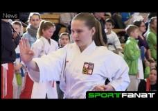 Berlin Open im Karate 2015
