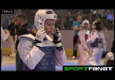 Berlin Open im Taekwondo 2015