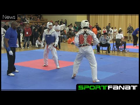 Internationaler Taekwondo-Cup 2015