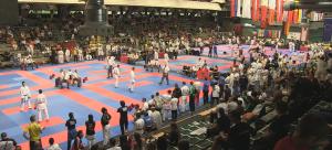 Insgesamt gehen mehr als 1000 Sportler, aus über 30 verschiedenen Nationen beim Banzai-Cup 2016 an den Start