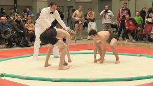 """Sumo-Ringen ist nicht nur etwas für echte """"Schwergewichte"""""""