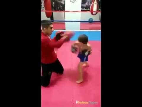 Mini Bruce Lee entdeckt!