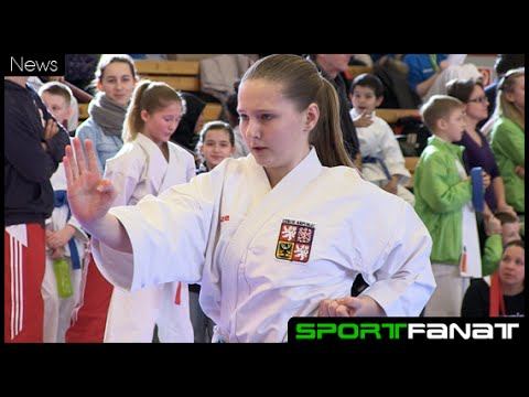Berlin Open im Karate 2015